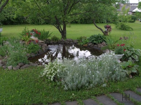 aiatiikide rajamine